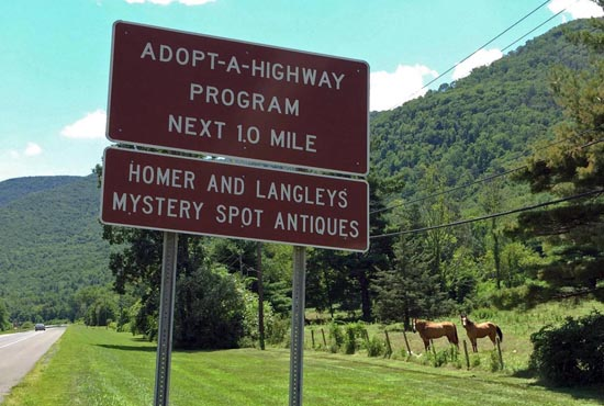 Our Adopt-A-Highway sign proudly stands tall on Route 28, right next to the Phoenicia Diner.